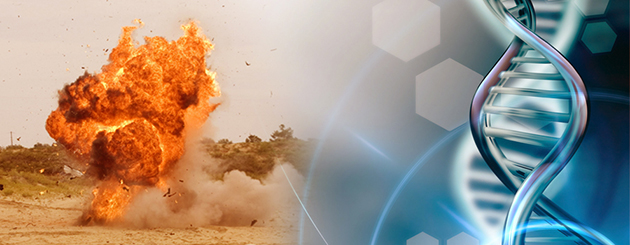Researchers Study DNA From Explosives